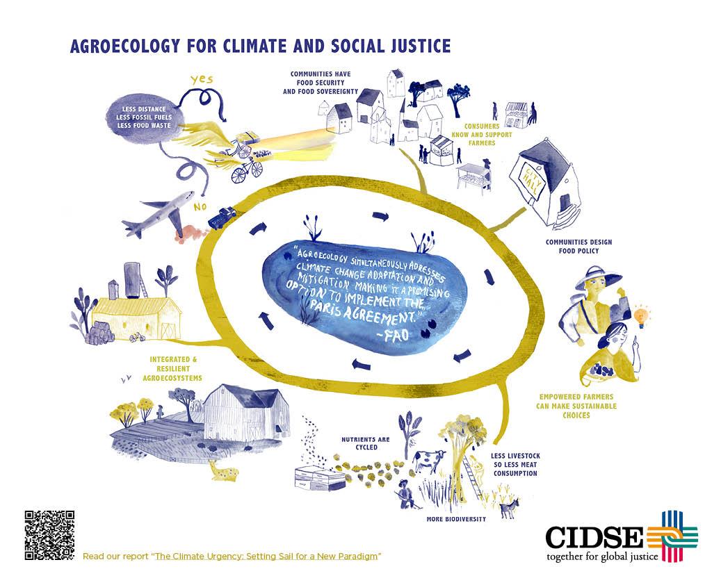 CIDSE LTG agroecology infographic web